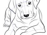 Dog Drawing Realistic Easy Dog Drawings In Pencil Easy for Kids Sketch Coloring Page Drawing