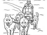 Dogs Drawing Sleds 20 Best Sled Dogs Images Sled Dogs Dog Cat Funny Dogs