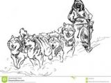 Dogs Drawing Sleds 236 Best Dog Sledding Mushing Images Sled Dogs Husky Dog Scouts