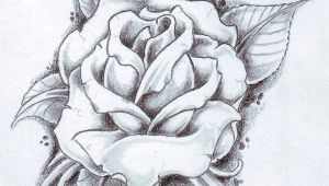 Draw A Black Rose Tatto Black Rose Tattoo Designs Ideas Photos Images Ink