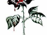 Draw A Bleeding Rose Dongetrabi Black Rose Drawing Bleeding Images