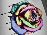 Draw A Rose and Colour It Artist Unknown Date Unknown Medium Drawing Using Colored