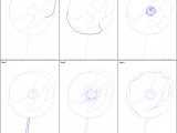 Draw A Rose On Paper How to Draw Poppy Flower Printable Drawing Sheet by