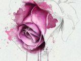 Draw A Rose Watercolor Watercolor Rose Google Zoeken Painting Watercolor Watercolor