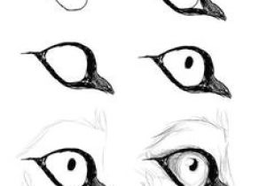 Draw A Wolf Eye Step by Step 688 Best Drawing People Step by Step Images In 2019 Learn to Draw