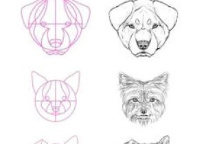 Draw A Wolf Eye Step by Step Wolf Drawings Step B Wolf Drawings Step by Step Guides to Drawing