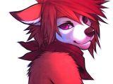 Draw An Anthro Wolf Furries Fursona Fox Furry Furry Art Furry Drawing Anthro Furry