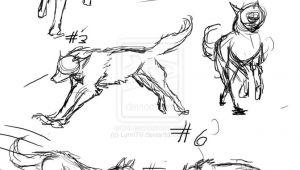 Draw Human Wolf Drawing Wolf Ideas Google Search Draw Photo Animal Anatomy