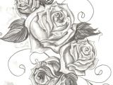Draw Out A Rose Thorn Good Reminder that You Can Either Look at A Rose and Curse It for