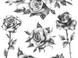 Draw Out A Rose Thorn Roses Flower Set Set Of 6 Temporary Tattoo Realistic Roses