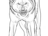 Draw Wolf Angry 2927 Best Drawing Images In 2019 Fantasy Creatures Animal