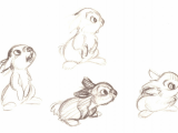 Drawing 2d Characters Disney Bambi Concept Art 2d Animation Thumper Character Design