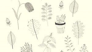 Drawing 2d Flowers Katt Frank 2d Drawings In 2019 Pinterest Illustration