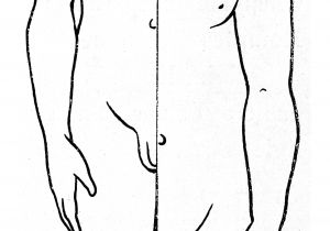 Drawing 9 Year Old Drawing Wikipedia