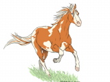 Drawing A Anime Horse Aerick Horse Hubedihubbe In 2018 Pinterest Centaur Horses