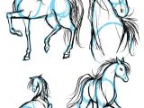 Drawing A Anime Horse Drawing Animals In Manga Letraset Blog Creative Opportunities