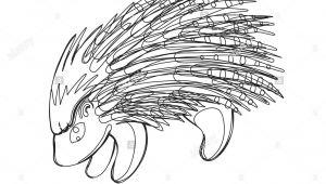 Drawing A Cartoon Porcupine Illustration Porcupine Stockfotos Illustration Porcupine Bilder