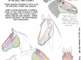 Drawing A Cartoon Unicorn Head Drawing Art Draw Animal Skeleton Anatomy Horse Reference Tutorial