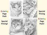 Drawing A Cat Eye Drawing Of Cat Eye at Troller Us