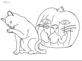 Drawing A Cat for Kindergarten Coloring Pages Of Animals Preschool Color Pages Animals Luxury