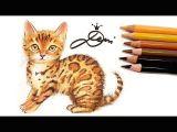 Drawing A Cat Youtube Bengal Katze Zeichnen Lernen Mit Buntstiften How to Draw A Bengal