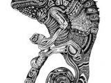 Drawing A Chameleon Eye 20 Best Color Chameleon Images Coloring Pages Drawings Print