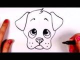 Drawing A Dog Face Step by Step Draw A Dog Face Drawings Drawings Dogs Drawing for Kids