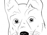 Drawing A Dog Face Step by Step Learn How to Draw German Shepherd Dog Face Farm Animals Step by