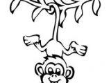 Drawing A Easy Monkey 36 Best Monkeys Images Monkeys How to Draw Monkey