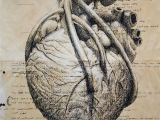 Drawing A Perfect Heart Pin by D A A D D D A A D On A I Frankensteina Pinterest Heart