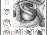Drawing A Rose Beginners How to Draw A Rose Tutorial Quick Easy Step by Step Can Learn
