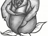 Drawing A Rose Bud Easy Steps to Draw A Flower How to Draw A Rose Bud Rose Bud Step 10