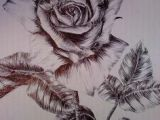 Drawing A Rose Time Lapse 108 Best Rose Drawings Images Flowers Ink Cool Tattoos