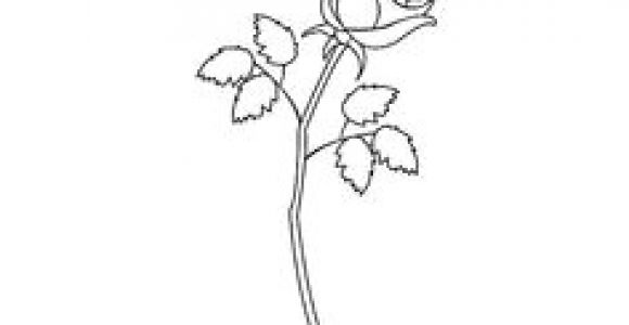 Drawing A Rose Youtube 163 Best How to Draw Rose Images Drawings Drawing Flowers How to