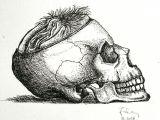 Drawing A Skull In Illustrator Art Artist Artgram Artwork Shunga Dailyart Design Ink