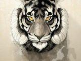 Drawing A Tiger Eye Die 54 Besten Bilder Von Ulli Art Drawings Drawing S Und Painting