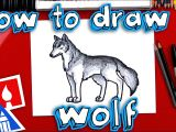 Drawing A Wolf Cub How to Draw A Realistic Wolf Youtube
