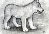 Drawing A Wolf Pup 10 Best Ideas for the House Images Drawings Ideas for Drawing Wolves