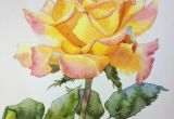 Drawing A Yellow Rose Yellow Rose Kitipong Ti Artist Pinterest Rose Watercolor and