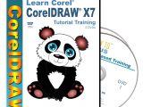 Drawing An Anime Cartoon In Coreldraw Amazon Com Corel Draw Coreldraw X7 Tutorial Training On 2 Dvds Over