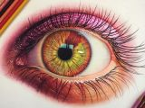 Drawing An Eye Realistically with Colored Pencils 25 Stunning and Realistic Color Pencil Drawings by Morgan Davidson
