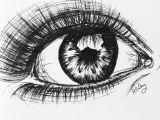 Drawing An Eye with Pen Pen Eye Life Draw Art Drawings Art