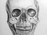 Drawing Anatomical Skull Pin by Megan On Art Drawings Art Drawings Pinterest
