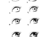 Drawing Anime Eyes Easy How to Draw Eye Portrait Step by Step Eyeballs Drawings Art