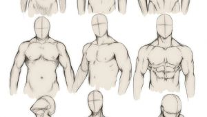 Drawing Anime Human Anatomy How to Draw the Human Body Study Male Body Types Comic Manga