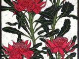 Drawing Australian Flowers 686 Best Botanical Arts Crafts Images In 2019 Botanical