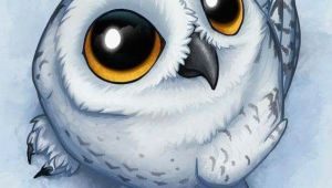 Drawing Cartoon Owl Eyes Pin by Sheila norfus On Owl Art Pinterest Owl Owl Art and Snowy Owl