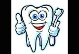 Drawing Cartoon Teeth Human Teeth Types Video for Kids Youtube