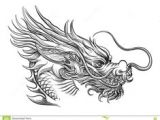 Drawing Chinese Dragons 997 Best asian Dragons Images In 2019 Japanese Tattoos Japanese