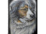 Drawing Collie Dogs Drawing Of Collie Dog Animal Art Notebook Collie Dog